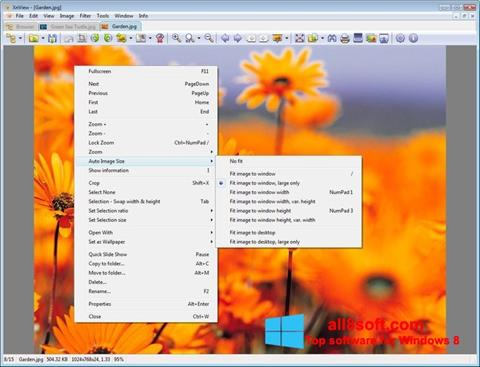 Screenshot XnView Windows 8
