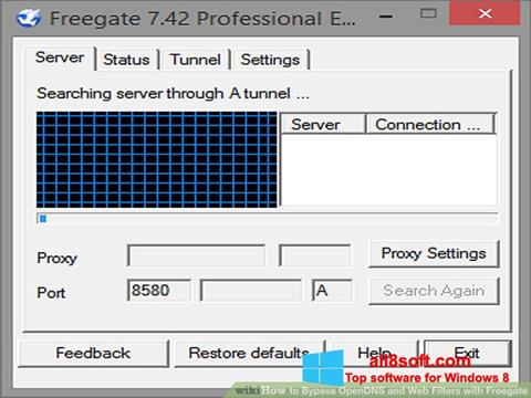 Screenshot Freegate Windows 8