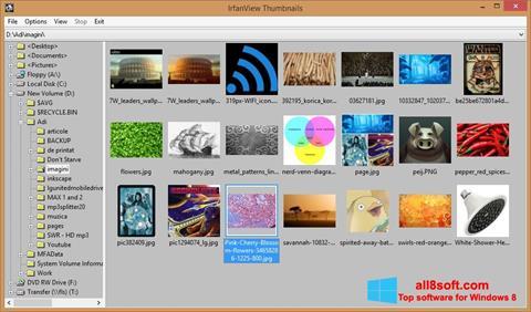 Screenshot IrfanView Windows 8