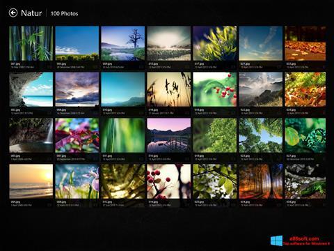 Screenshot Picasa Photo Viewer Windows 8